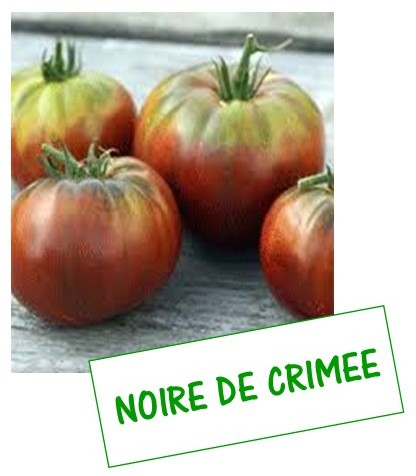 Tomate noire de crimee fan 2 tomates - Noir de crimee ...