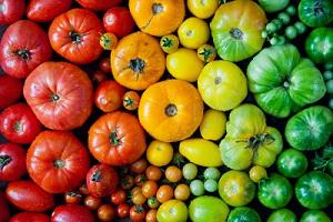Comment sélectionner les variétés de tomate pour les semis?