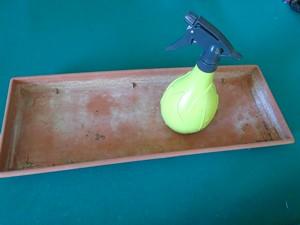 accessoire pour les semis de tomate
