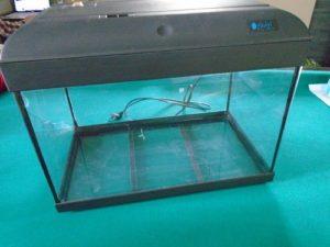 aquarium nu pour enceinte de croissance