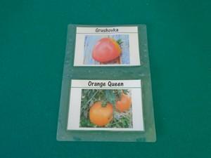 étiquette à tomates plastifiée