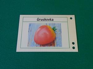 étiquette à tomates sur bristol