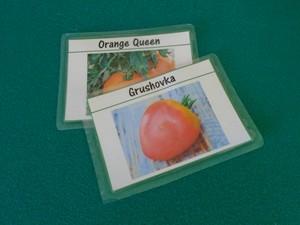étiquette à tomates découpée