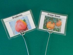 etiquette à tomate dans matériel à tomates