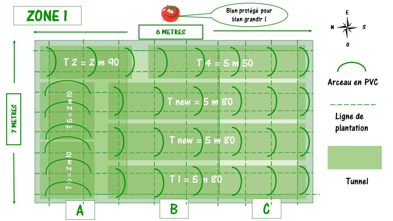 matériel à tomates avec plan des tunnels