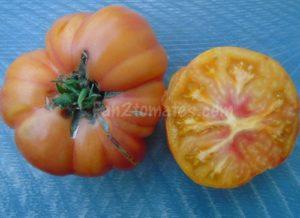 tomate ananas jaune pour choisir les variétés de tomates
