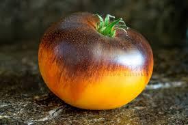 tomate alice's dream pour choisir les variétés de tomates