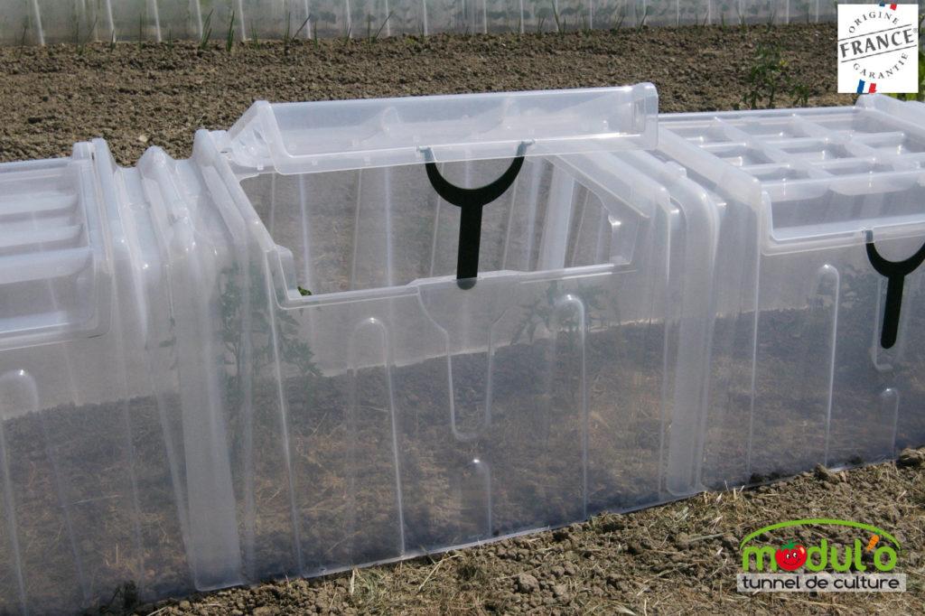 tunnel modulo pour planter les tomates