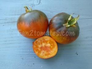 AD pour saison des tomates