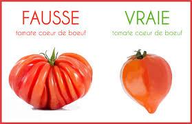 fausse CB saison des tomates