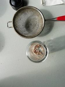 graine dans pot pour récolter les graines