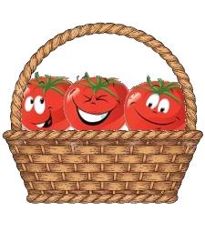 kit tomates