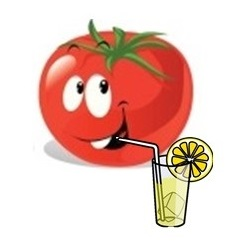 graines de tomates mi-saisons