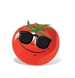 tomates tardives
