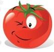 graines de tomates rouges
