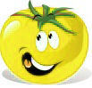 les graines de tomates jaunes
