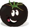 graines de tomates noires