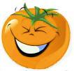 graines de tomates oranges