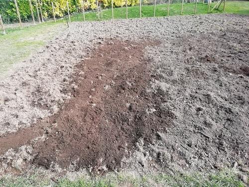 épandage du terreau pour agrandir le jardin