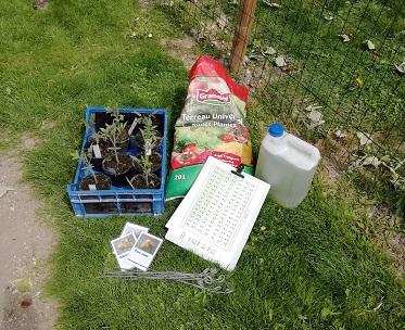 matériel pour planter les tomates