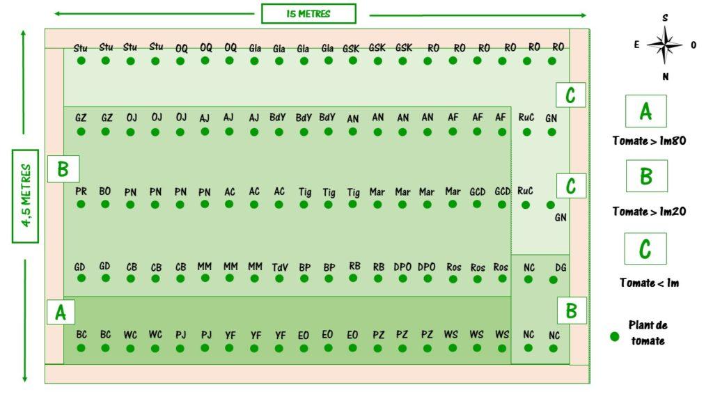réaliser un plan de jardin avec variété