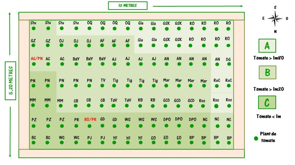 plan de jardin effectif