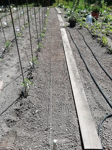 barrière naturelle sud avec cordeau