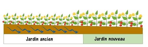 écoulement de l'eau dans jardin