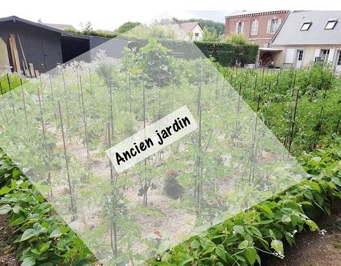 zone des plants sur ancien jardin pour booster les plants de tomates