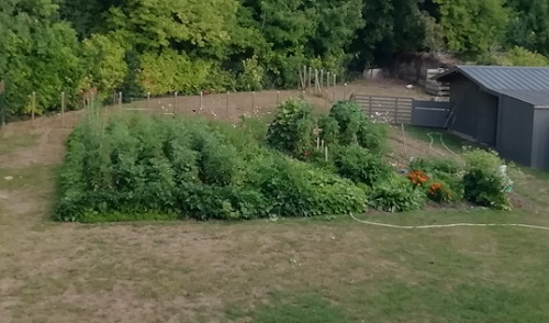jardin 1308