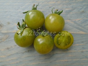 tomate green doctors