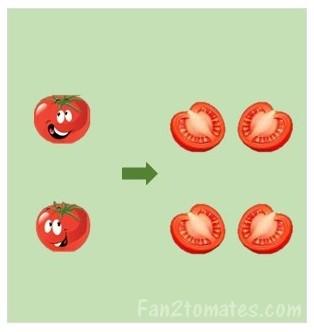 coupe des tomates