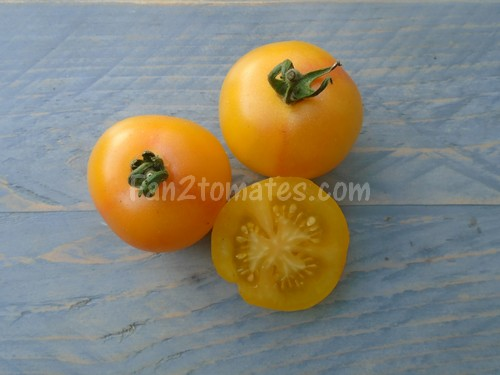 IC2 tomates inconnues