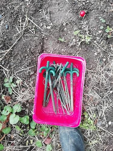 piquets enlevés sales pour ranger le matériel à tomates