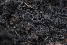 compost pour amender le jardin