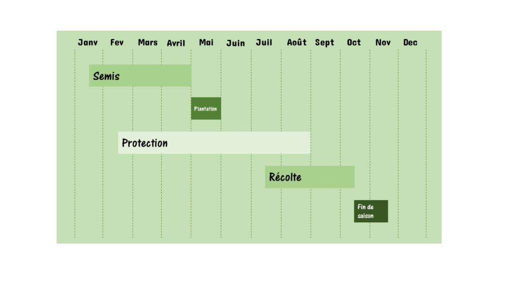 rétro planning pour organiser la saison 2021