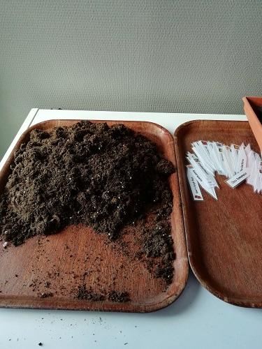terreau et étiquette à semis