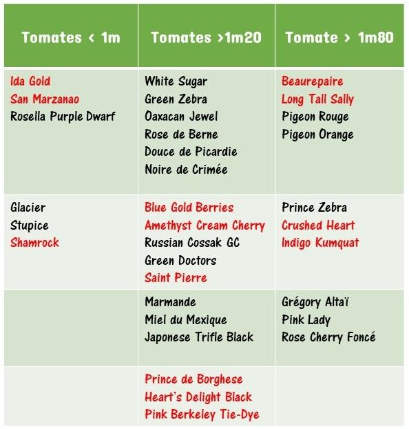 classification des variétés pour preparer la plantation des tomates