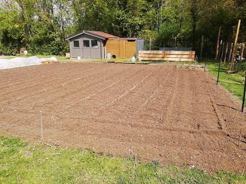 jardin prêt pour repiquer les tomates