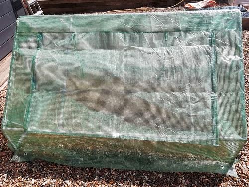 serre froide new 1 pour rempoter les plants de tomates